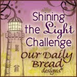 Shining The Light Challenge