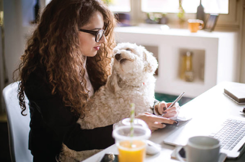 girl and dog at desk