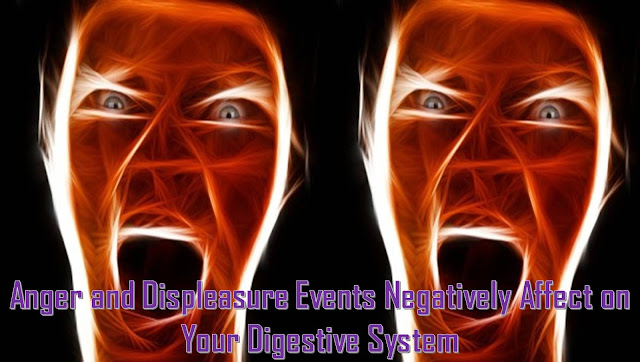 What Causes Harm to Our Digestive System - How to Treat Stomach Problems Easily