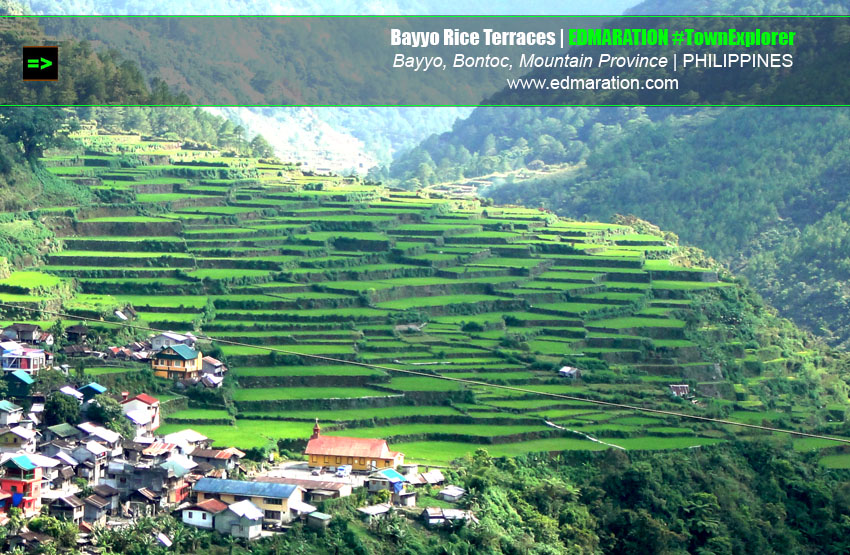 Bayyo Rice Terraces- Bontoc, Mountain Province, Philippines