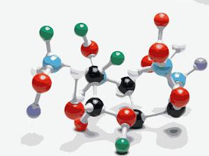 ¿Y cómo es la formación de las macromoleculas.?