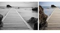 Colorare Foto in bianco e nero o risaltando colori