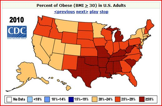 Why America Is So Fat 76
