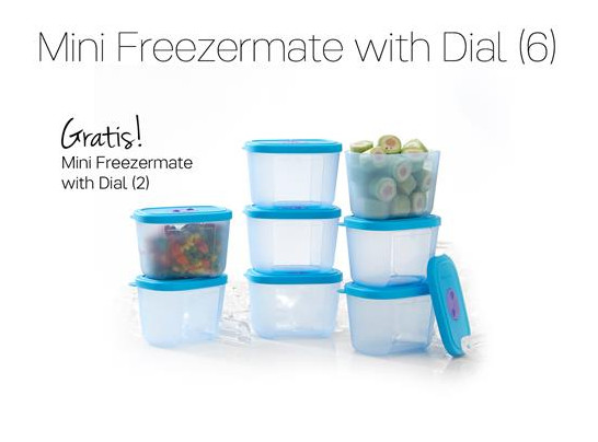 Tupperware Mini Freezermate With Dial (6) Promo November 2016