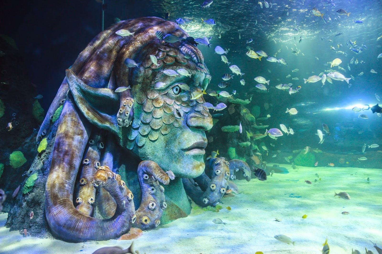 Microscope Life: Michigan's Sea Life Aquarium