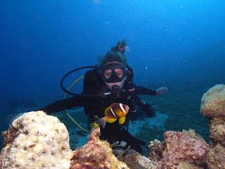 Diver of Deep Siam