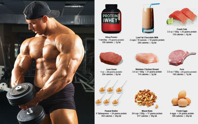 Strongest muscle building supplement in the world