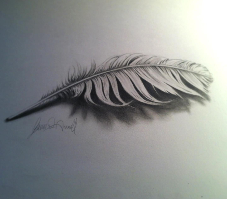 Gavinodonnellart: 3D Feather Drawing