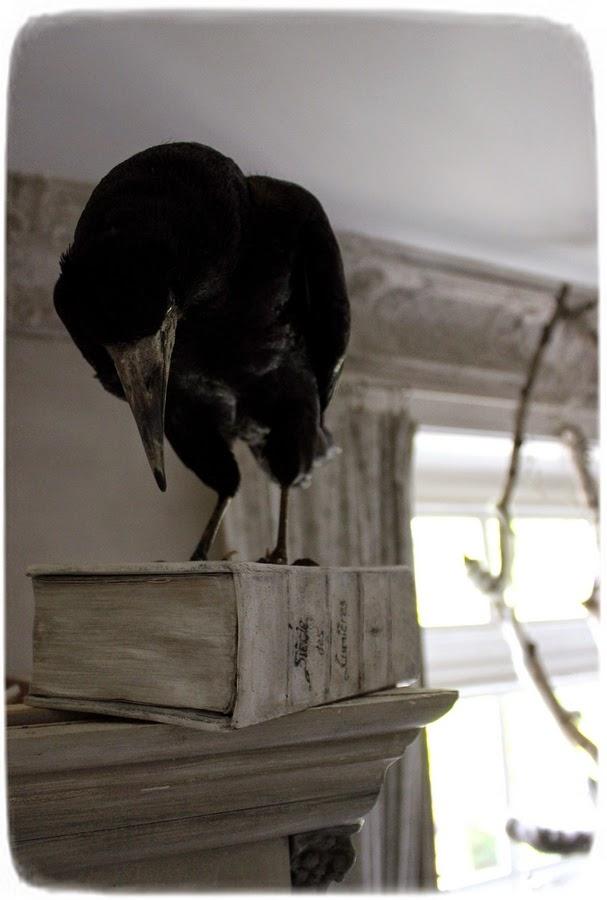 Méas Vintage: Quoth, the Raven...