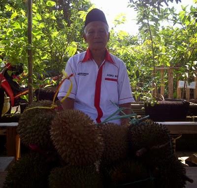 durian merah asli banyuwangi