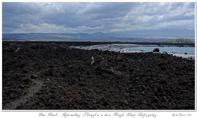 Pueo Beach: Approaching. Through a'a lava. Rough. Sharp. Unforgiving.