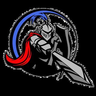 Logo DLS 2017