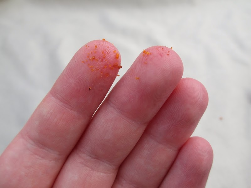 Fingers Covered in Barely-There Dorito Dust