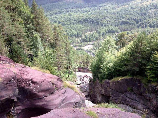 El frondós bosc mixt de Pineta des del pont de la cascada del La Larri