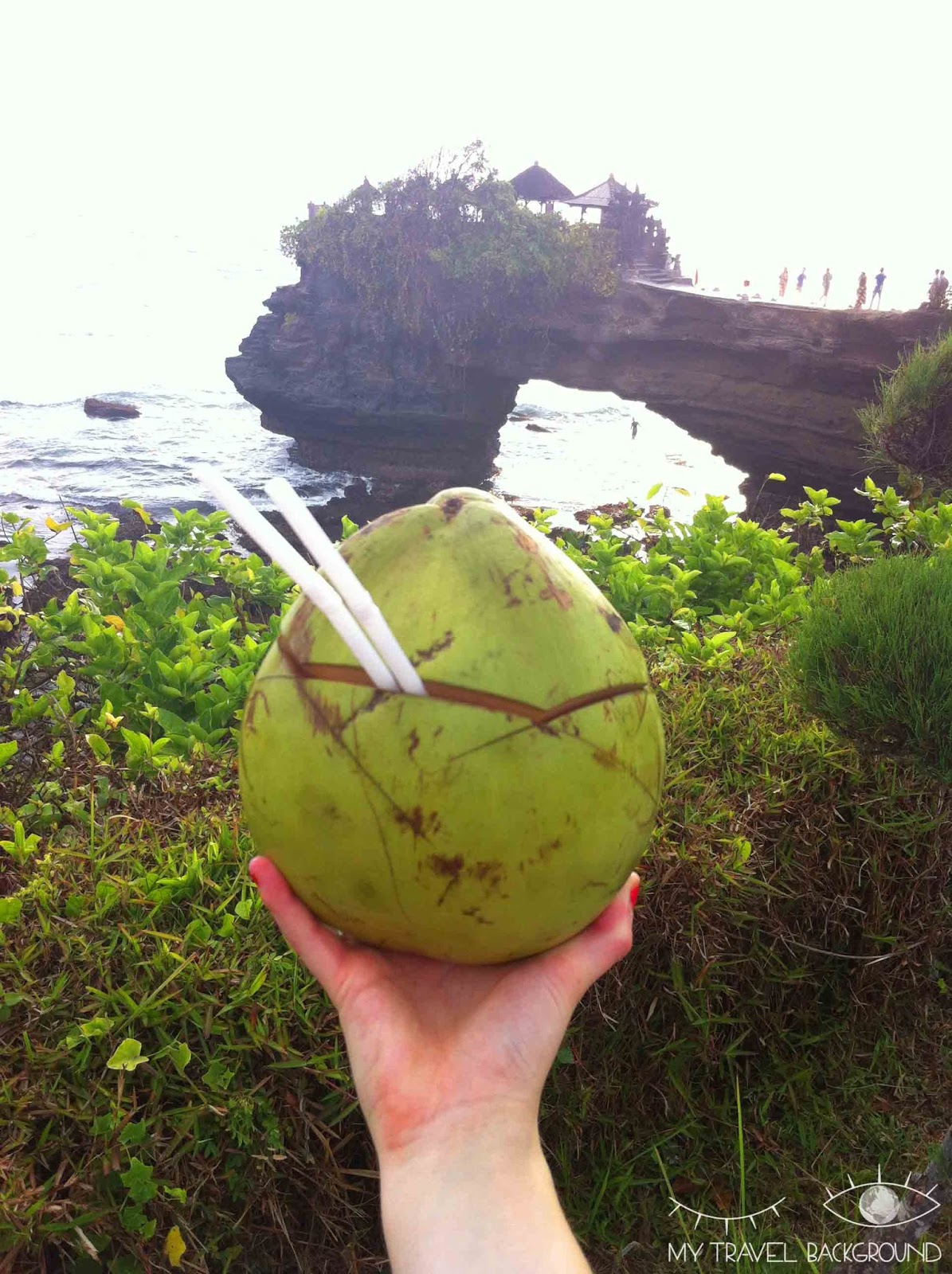 My Travel Background : A la découverte de Kuta et du Sud de Bali - Noix de Coco à Tanah Lot