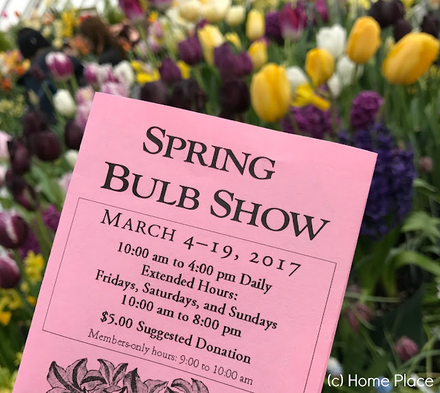 Botanical Garden at Smith College Spring Bulb Show