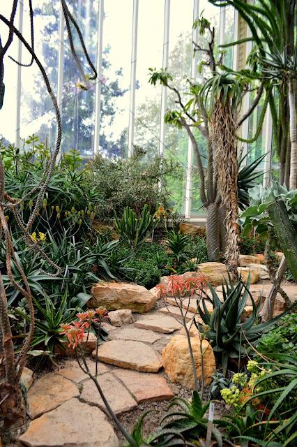 Serre dans les jardins botaniques de Genève