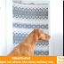#WhatTheFluff | Η νέα φάρσα που κάνουν όλοι στους σκύλους τους (video)