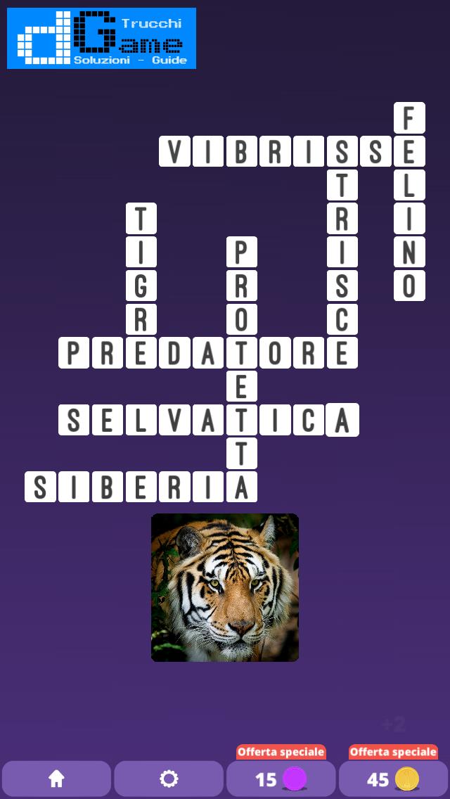 Soluzioni One Clue Crossword livello 1 schema intermedio (Cruciverba illustrato)  | Parole e foto