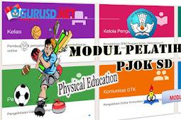 Modul Guru Pembelajar PJOK/Penjas Sekolah Dasar ( SD ) Lengkap