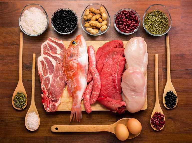 9 Funções Importantes da Proteína Em Seu Corpo