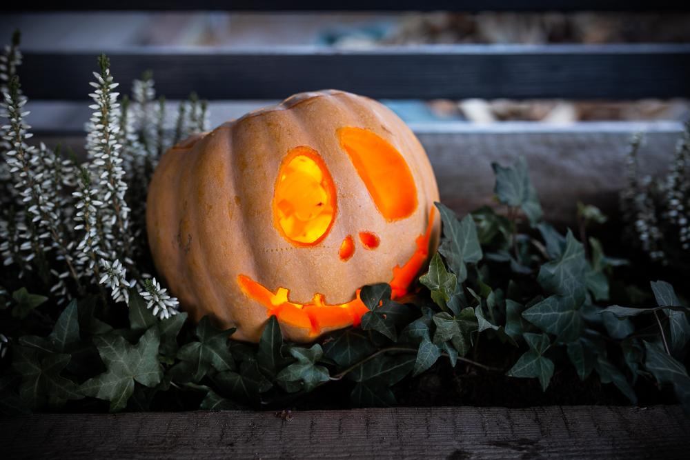 Halloween kurpitsa kaiverrus