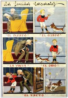 5 Sentidos - Navarrete (1910), Museo do Humor, Buenos Aires