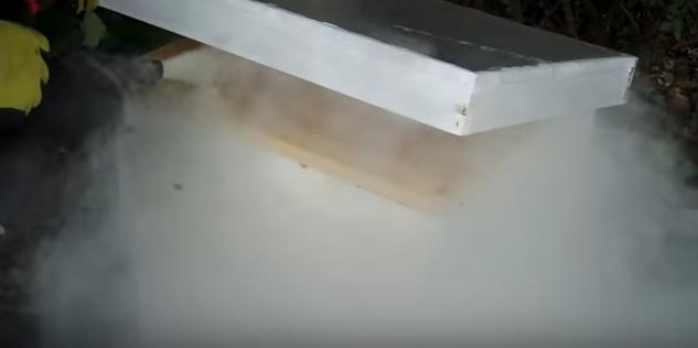 Ο χειρότερος μελισσοκόμος όλων των εποχών video