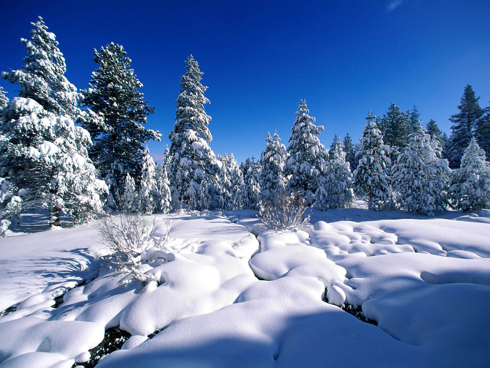 wallpapers: Snow Wallpapers