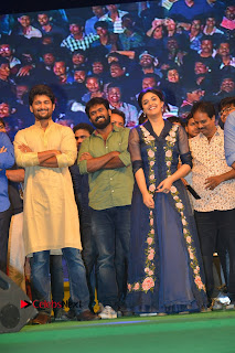 Nenu Local Audio Launch Stills  0029.JPG