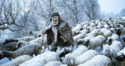 Οι 25 συμβουλές ζωής από ένα παππού γεροβοσκό