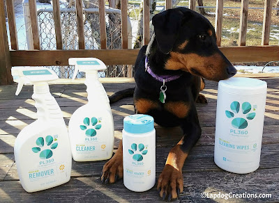 Penny Thinks Everyone Should #SpringClean with #PetSafe #PL360 Plant-Based #CleaningProducts #LapdogCreations #dobermanpuppy #dogsafe #DogHome ©LapdogCreations