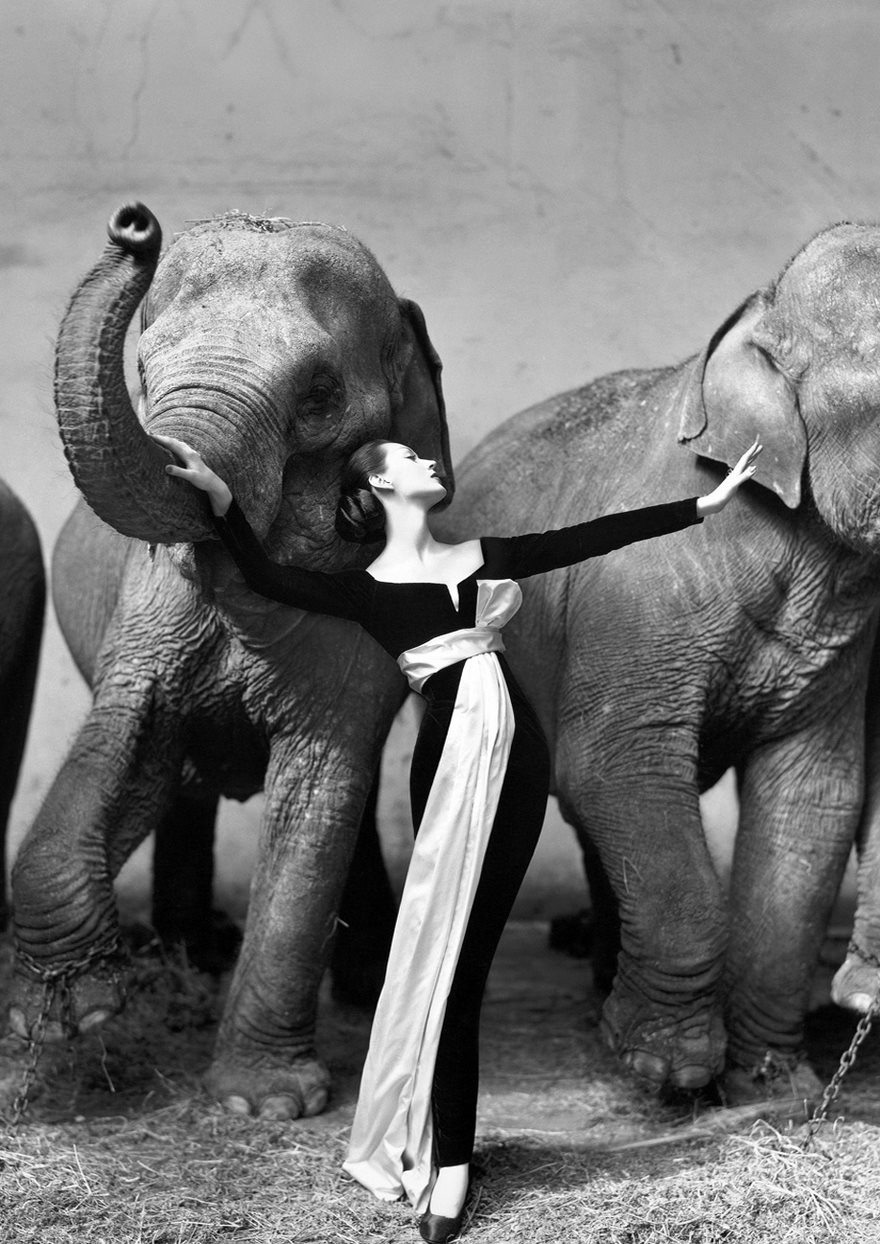 #70 Dovima With Elephants, Paris, August, Richard Avedon, 1955 - Top 100 Of The Most Influential Photos Of All Time