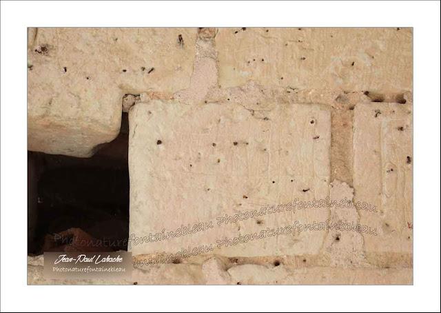 église de Thizay credit jean paul lahache
