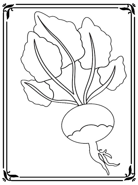 free printable turnip coloring pages