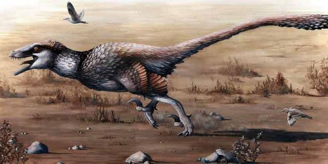 velociraptor by Emily