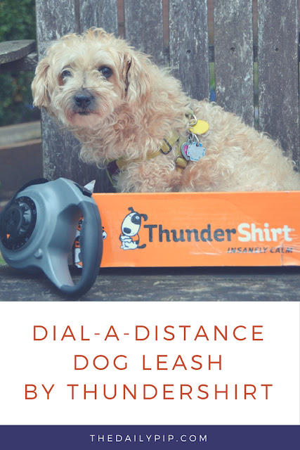 Ruby reviews Dial-A-Leash by Thundershirt