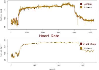 ความแม่นยำของที่วัดหัวใจแบบ optical