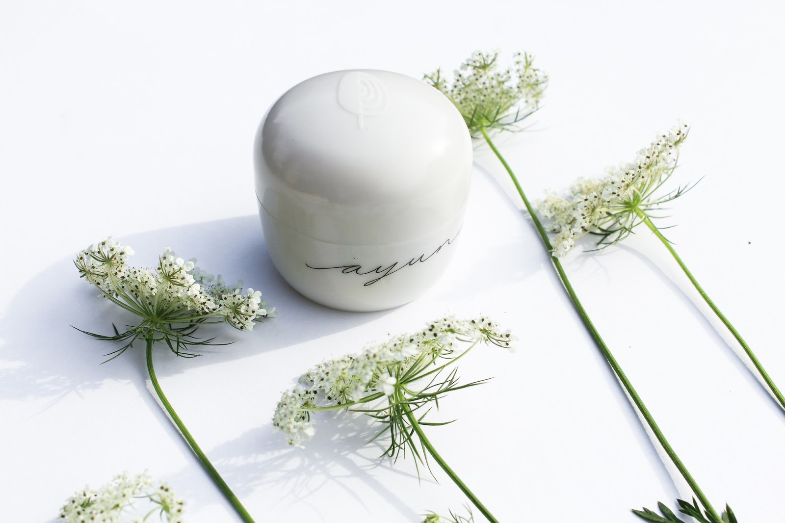 Ayuna Less is Beauty Cream Natural Rejuvenating Treatment Light. August Beauty Discovery by Beauty Heroes. Probiotics in skincare