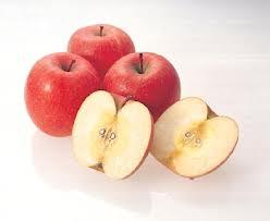 Manfaat dan Khasiat Buah Apel (Rosaceae)