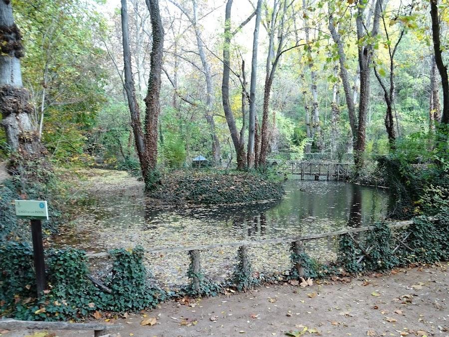 Lago de los Patos en El Monasterio de Piedra