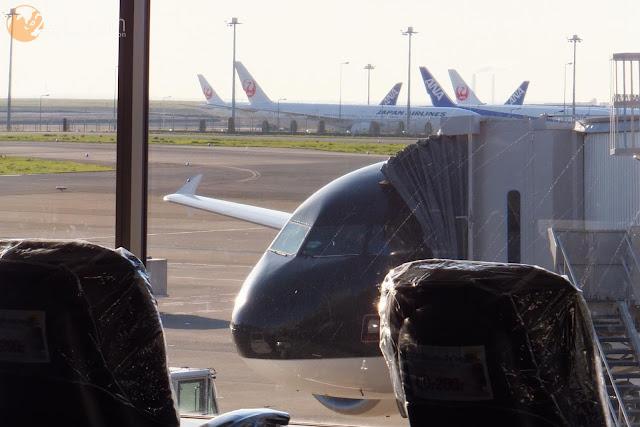 スターフライヤーA320 Starflyer-A320fleet2