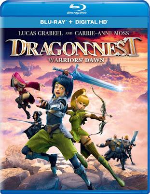 Dragon Nest Warriors Dawn 2014 Dual Audio Hindi BRRip 480p 300Mb x264
