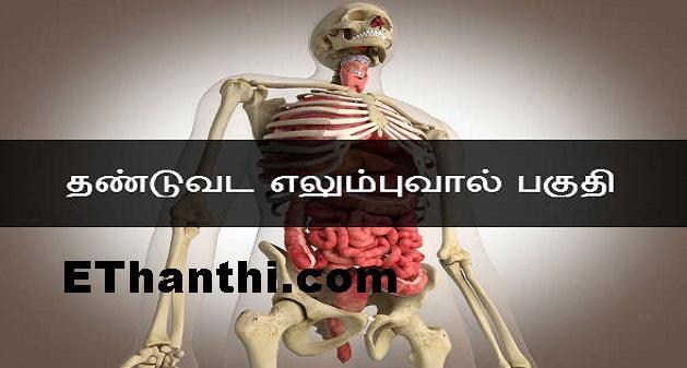 உடலில் தேவையற்ற உடல் பாகங்கள் | Unwanted body parts on the body !