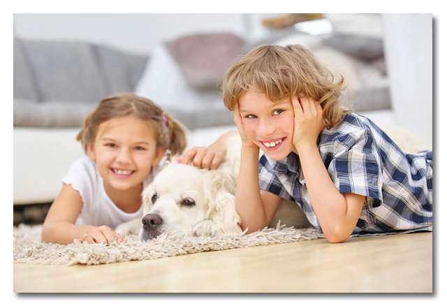 Young girl and boy with dogs