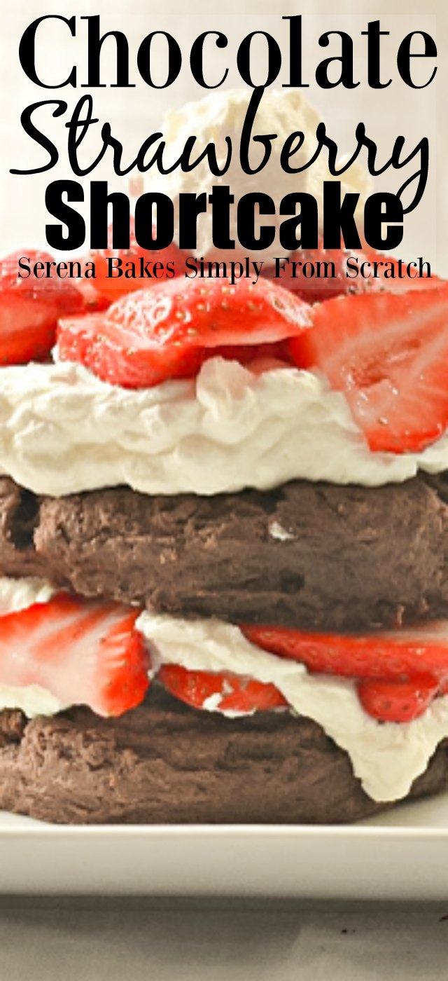 Chocolate Strawberry Shortcake from Serena Bakes Simply From Scratch.