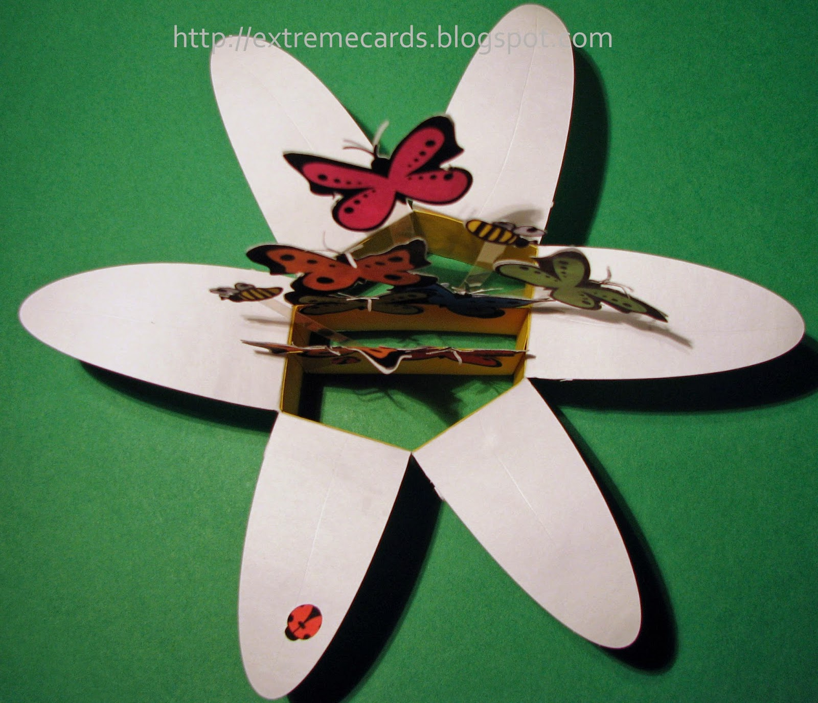 Daisy pop up card with butterflies, bees, ladybugs