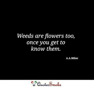 A.A. Milne Wisdom Quote