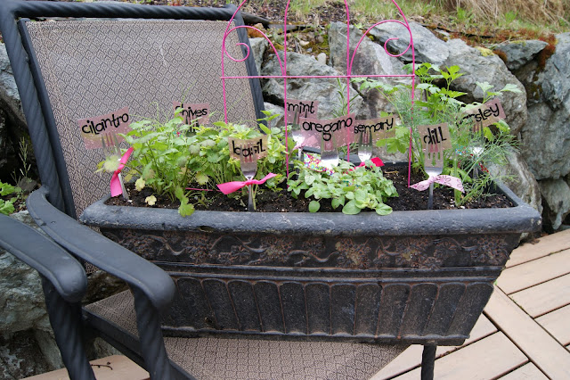 Mother's Day herb garden @michellepaigeblogs.com