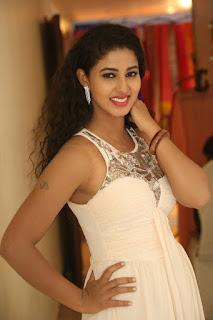 Actress Pavani Stills in Sleeveless Long Dress  0007
